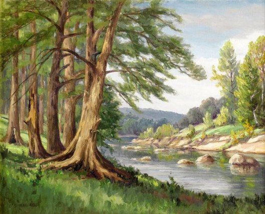 Guadalupe River, Near Fredericksburg, Texas