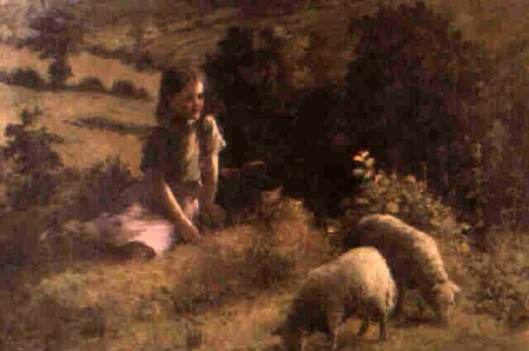 Young Girl In A Meadow With Sheep