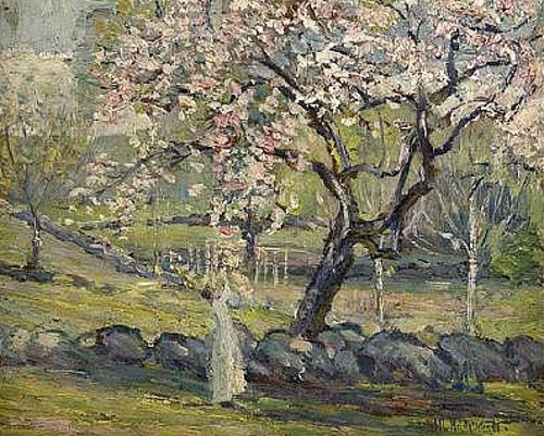 Sunlit View Of A Woman Gathering Cherry Blossoms