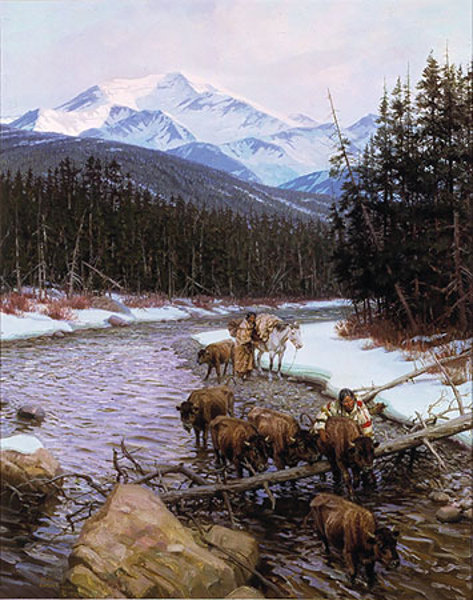 Walking Coyote And The Buffalo Orphan