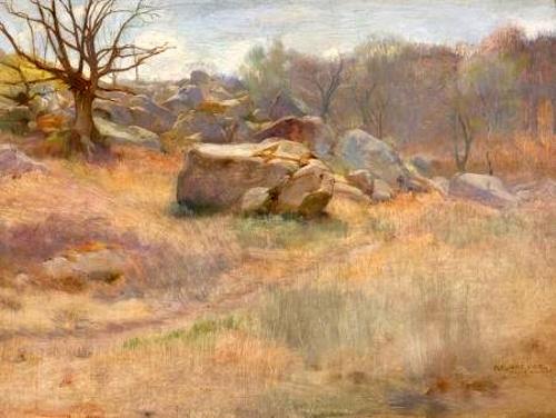 Landscape With Rock