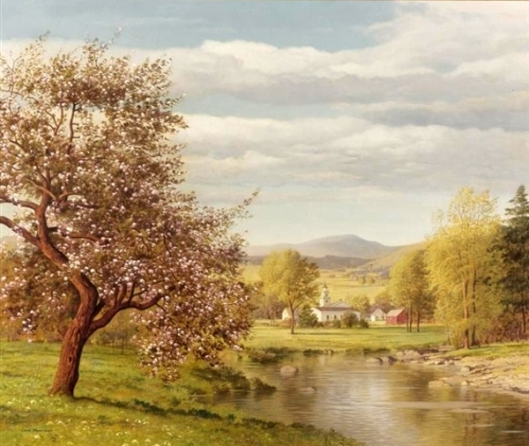 Valley In Spring