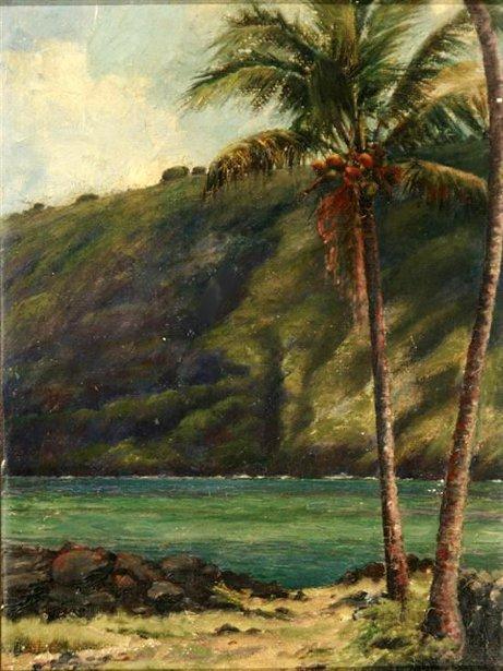 Hawaiian Inlet