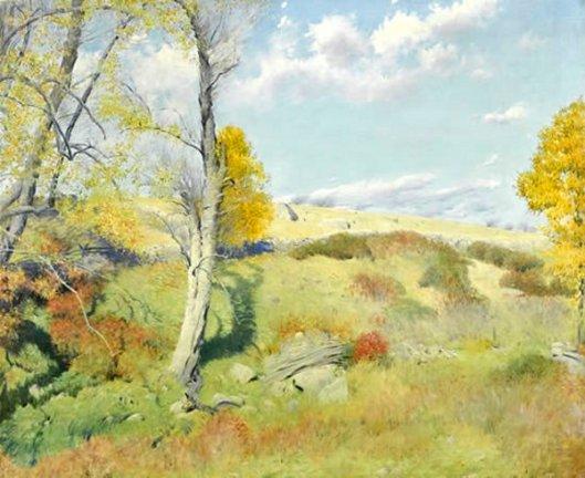 Lyme Meadows