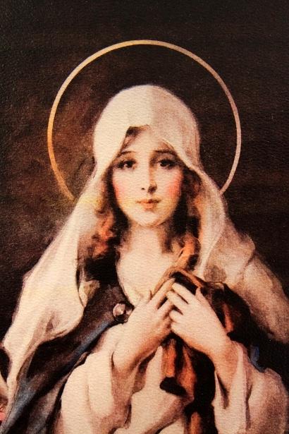 Madonna Of The Sacred Coat