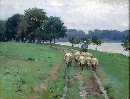 Sheep Walking Down Path