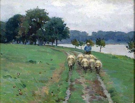 Sheep Walking Down Path