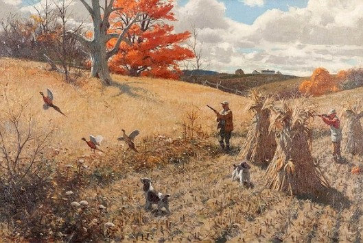 Springers And Pheasants