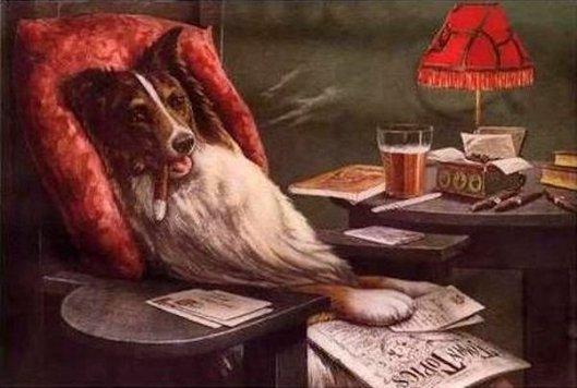 A Bachelor's Dog