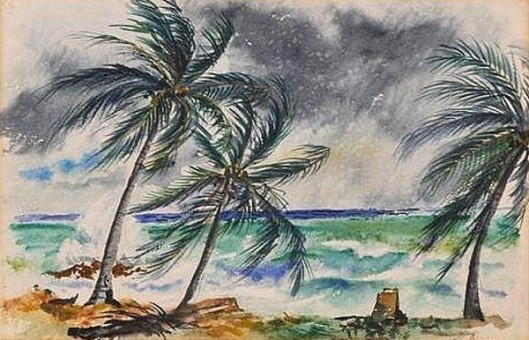 Tropical Squall