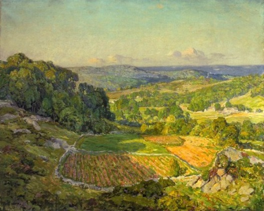A Valley In Spring