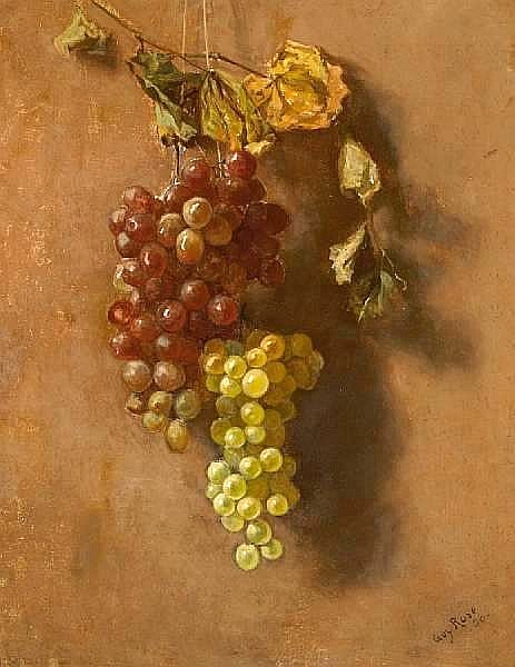 Grapes Suspended