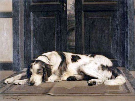 Sweet Dreams - Portrait Of A Sleeping Setter