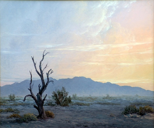 Desert At Evening