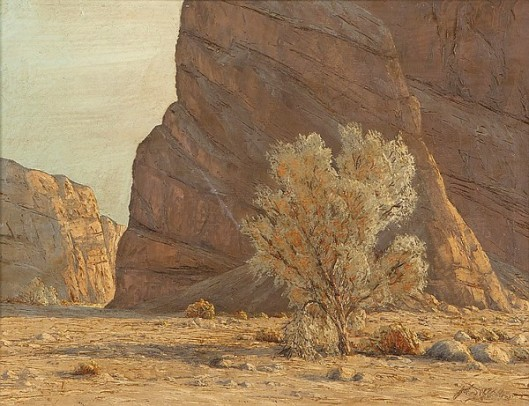 Desert Canyon With Smoke Tree