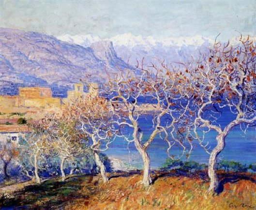 Fig Trees, Antibes