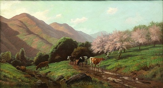 Cattle Grazing Near Cherry Blossoms
