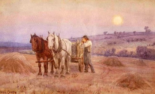 Harvest Scene At Sunset
