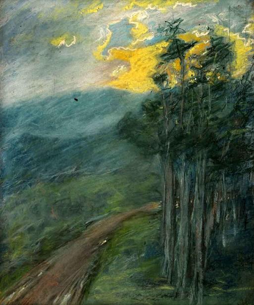 Woodland Road At Sunset
