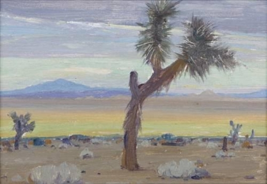 Desert Scene With Yucca Trees