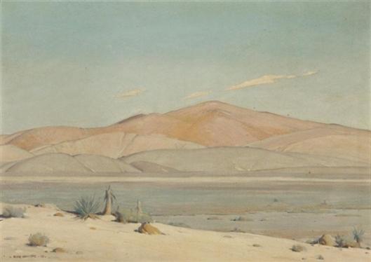 Mojave Sunlight - Desert Landscape