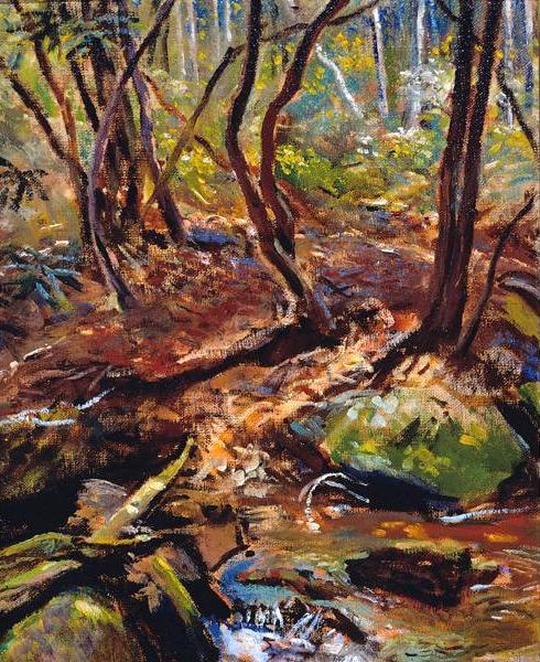 Stream In Wooded Landscape