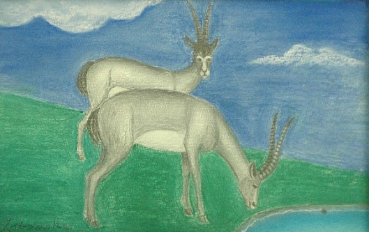 Two Ibex
