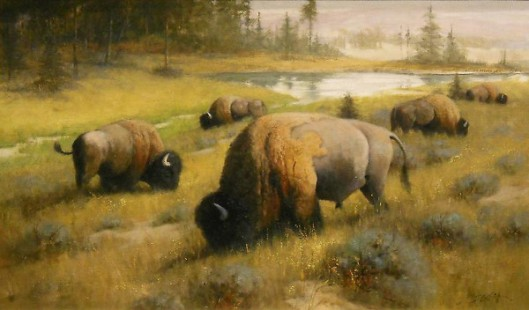 Land Of The Bison