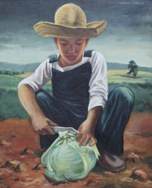 Young Farmer Cutting A Cabbage